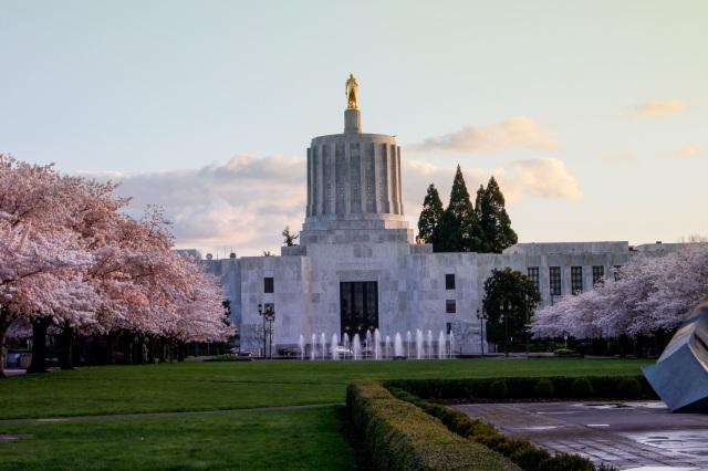 Oregon state cap.jpg